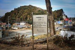 八坂神社:シイの看板