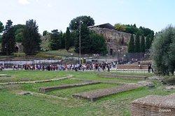 メタ・スーダン(Meta Sudans)は、コロッセオが完成してから数年後、89〜96年頃にウェヌスとローマ神殿(古代ローマ最大の寺院)の間の交差点に造られた大規模な円錐形の噴水です。コロッセオの入場予約時間待ちの間にコンスタンティヌスの凱旋門と一緒に見学しました。