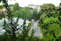 view on the graanhouse / garden