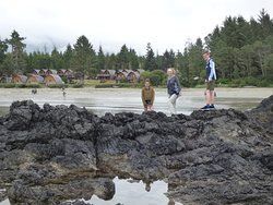 Rock pooling with the resort in the background