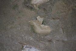 A petroglyph
