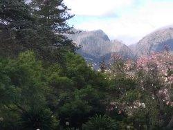 Cocorico extrem road funchal vous propose des sorties en montagne ou forêts ou site touristiques, la journée entière pour 3 personnes 150 euros  Rua Santa Maria 21 Funchal