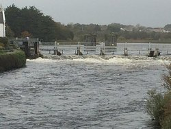 View of the Corrib weir looking up from the bridge opposite the Cathedral.