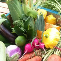 Tamworth Growers' Market