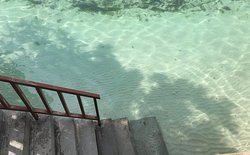 The stairs, with the water at our feet. Clear waters.