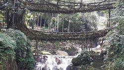 bridge with water fall