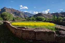 Matho village