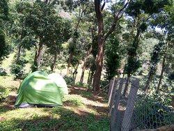 3 Men Tents