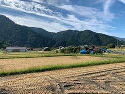 View from  Zenagi