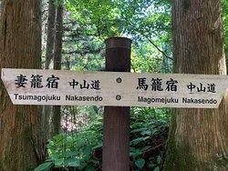 Trecking organized by Zenagi's team