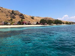 Exceptional Diving, Wonderful Resort in Paradise