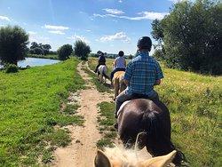 Horseback riding tour near Brasov, along the Olt river.