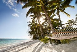 One of our hammocks - waiting for you to relax!