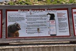 Bear Pepper Spray