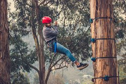 Escala en Arbol  en el Parque de Aventura