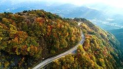 Ibukiyama Driveway