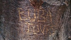 BUBA TOURS .com | Non-profit organization; your contribution will be used for primary needs | WhatsApp +220 7407534