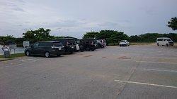駐車場。多くはレンタカー。