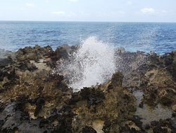 The Blowholes