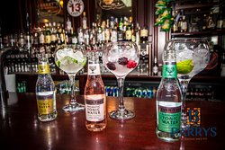 Excellent range of Gin and tonics