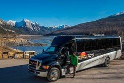 SunDog Transportation and Tours