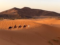 Camel ride in the Sahara