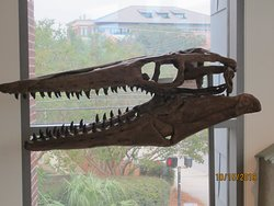 On display in the science building for students and visitors to experience.