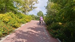 Paved routes make wheelchair visitors welcome