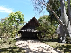 Tent 6 viewed from the sea - under a baobab tree