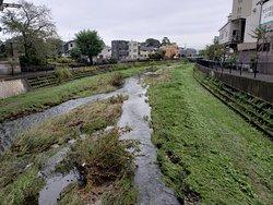 増水後の河原