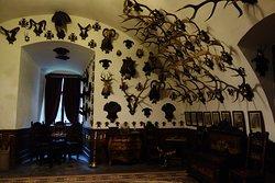 Так выглядят многие залы Конопиште
