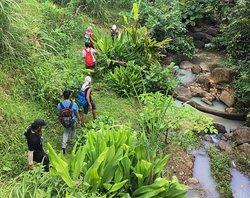 ViaVia Jogja - Courses and Travel