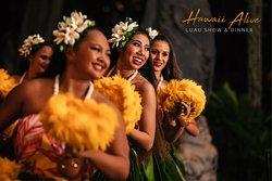 Hawaii Alive Luau Show & Dinner