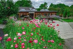 Brigit's Garden & Cafe