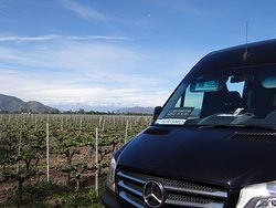 Colchagua Wine Tours provides private transportation services to Chile's best wineries in the central wine region.