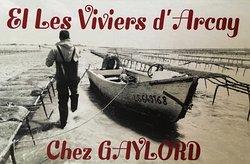 Les Viviers d'Arcay: Visites Ostréicoles