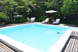 Zona de piscina rodeado de vegetación centenaria.