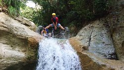 Iguana Mama Adventure Tours & Shore Excursions
