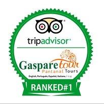 Gasparetour Pantanal Tours