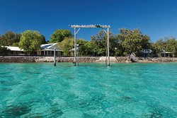 Heron Island - access directly from Gladstone's airports or from their Ferry from the Gladstone Marina