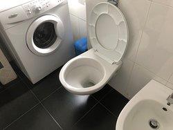 toilet and washing machine