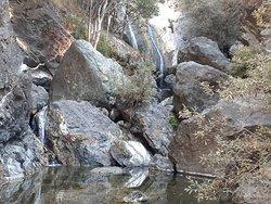 Hiking Salmon Creek California