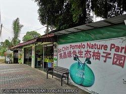 Go Chin Pomelo Nature Park