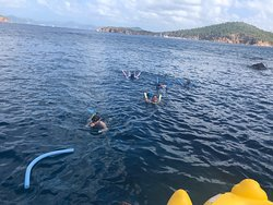 Swimming, Snorkeling, and just a bit of what is a giant rubber duck float.