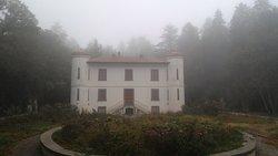La villa e il bosco