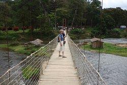 access bridge