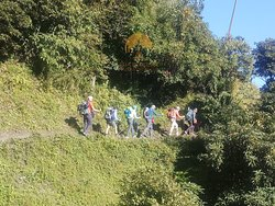 trekking in the  Annapurna region of Nepal provides not only majestic view of Himalayas but also an ample opportunity to experience green lush forests and village life of Nepal.