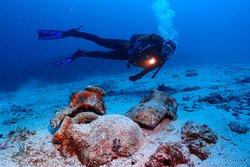 Split Diving