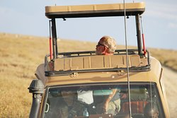 Game drive in Serengeti national park with 4x4 Toyota Land Cruiser with popup roof.