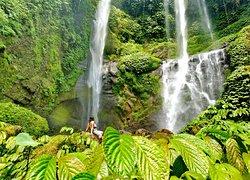 Unserer Meinung nach, der schönste und größte Wasserfall auf Bali.